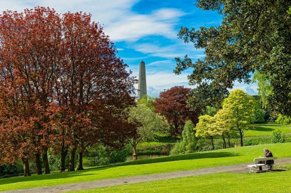 Феникс-парк в Дублине