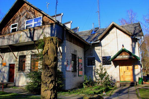 Музей природы в посёлке Лесное