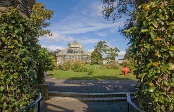 Национальный ботанический сад в Дублине
