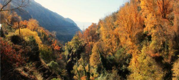 Осень в окрестностях Гранады
