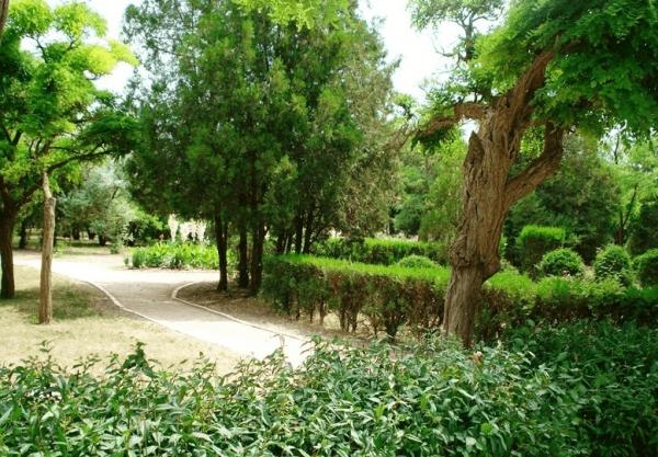 Пионерский парк в Алупке