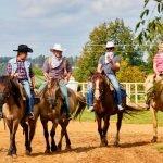 «Ковбои» на лошадях выезжают с фермы