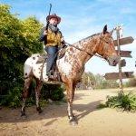 «Ковбой» с винтовкой верхом на лошади
