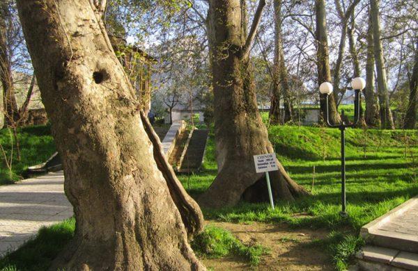 Сад Чор-Чинор недалеко от Самарканда