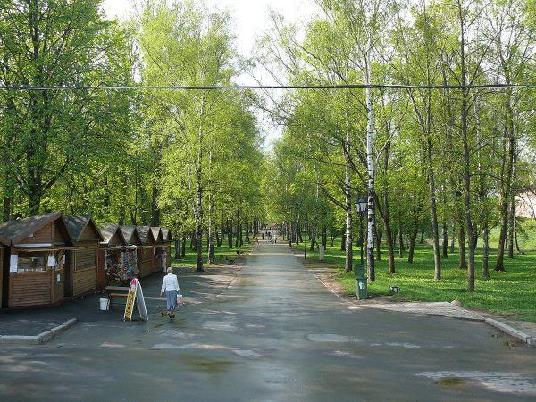 Вид на аллею в Кремлёвском парке Великого Новгорода