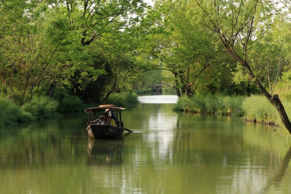 Вид на часть болот Кси-кси в Ханчжоу