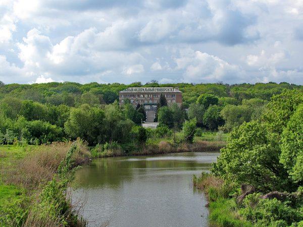 Ботанический сад ЮФУ в Ростове-на-Дону