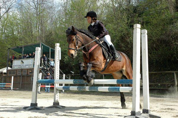 Мальчик на лошади преодолевает барьер