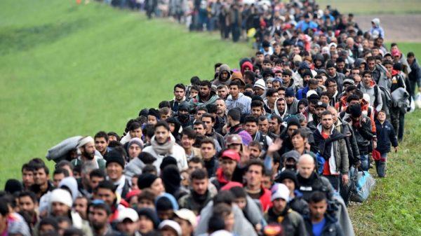 Поток мигрантов