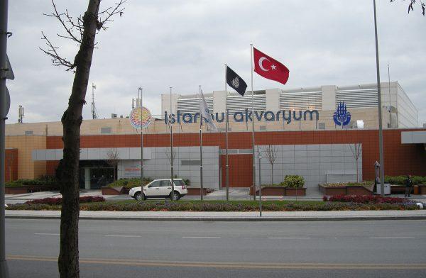 Океанариум «Аквариум» в Стамбуле