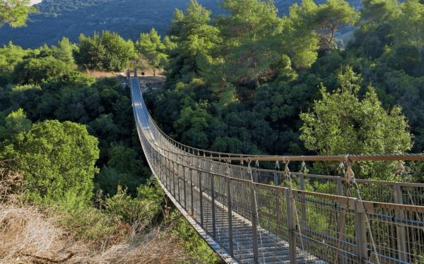 Подвесной мост в парке Нешер