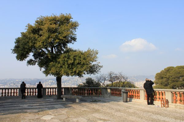 Смотровая площадка на Замковой горе