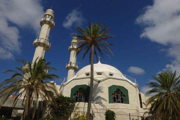 Здание мечети с двумя минаретами