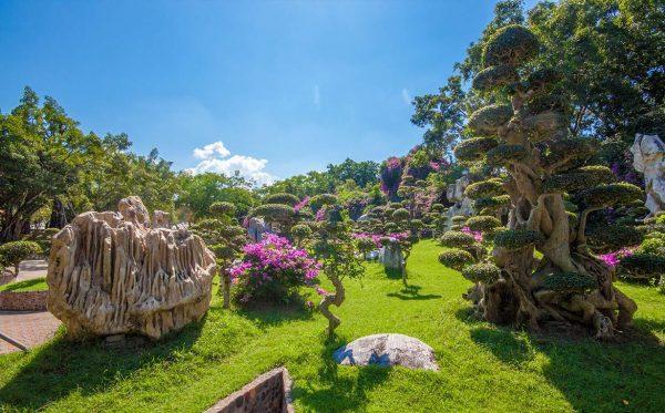 Древние камни и редкие растения на территории парка