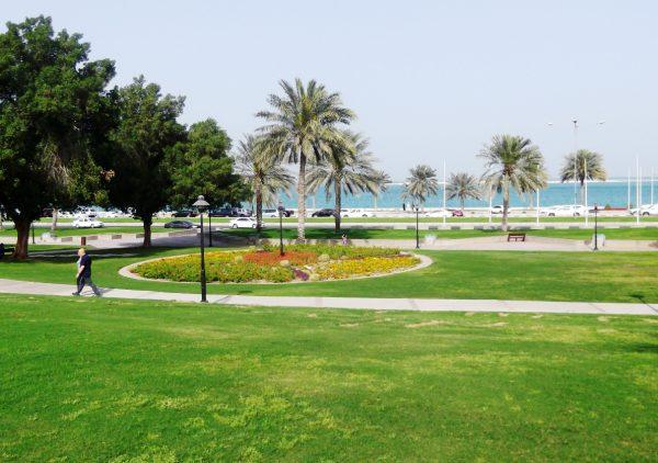 Зеленая площадка парка