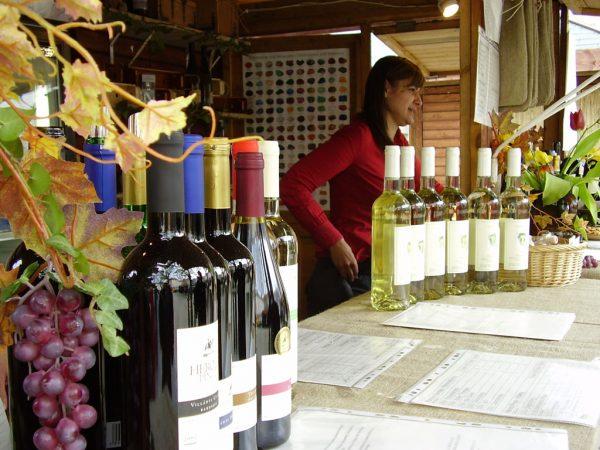 Бутылки с вином для дегустации