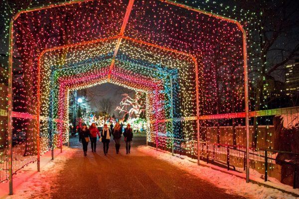 Рождество в Чикаго