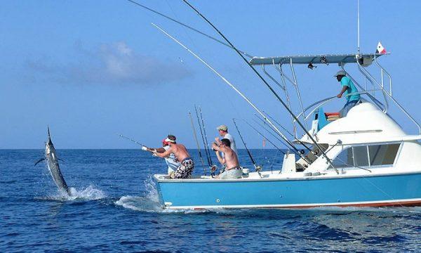 Рыбаки поймали крупную рыбу