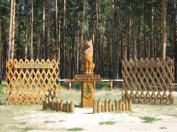 Тамбовский волк на Рассказовском шоссе