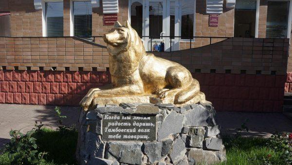 Тамбовский волк на Октябрьской