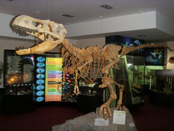 Вятский палеонтологический музей