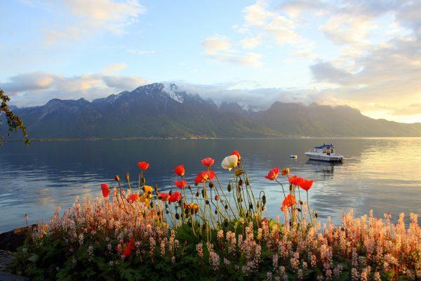 Вид на Женевское озеро с берега