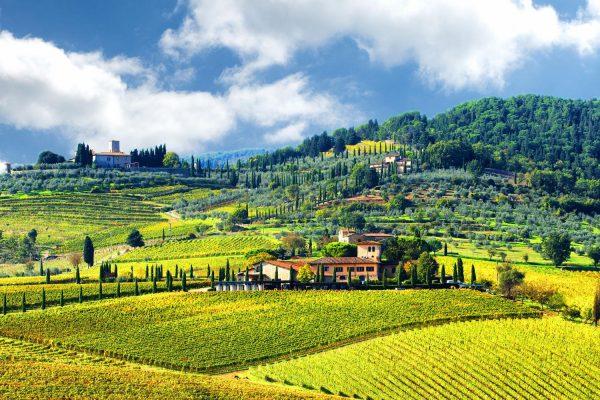 Виноградники региона Кьянти