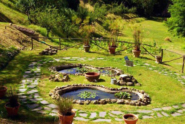 Крошечные пруды с водными растениями в ботаническом саду Сиены
