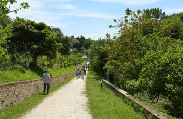 Люди идут по дорожке в парке