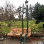 Живые фонари в Лопатинском саду: влюблённые