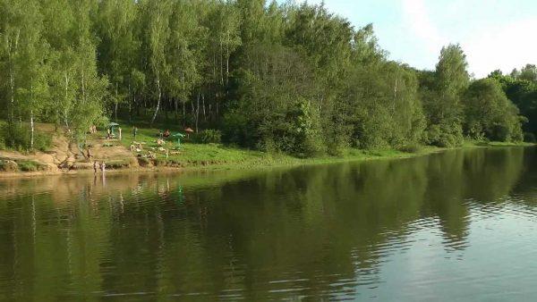 Вид на Реадовское озеро