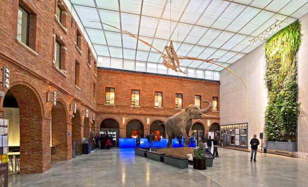 Люди рассматривают экспонаты в музее Тулузы