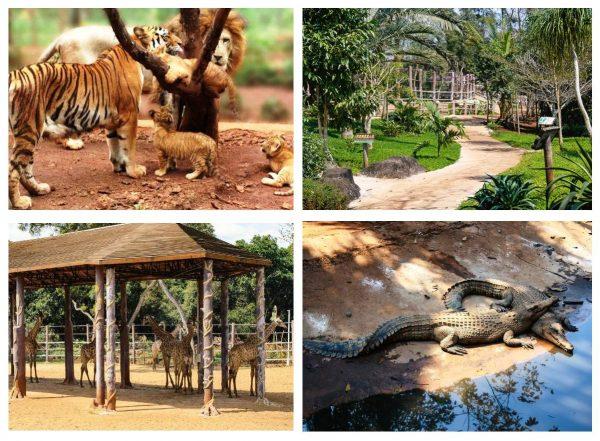 Сафари-парк «Дуншань» на Хайнане