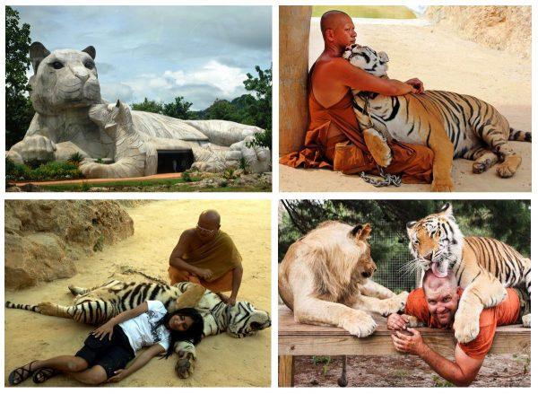 Тигриный монастрыь в Краби