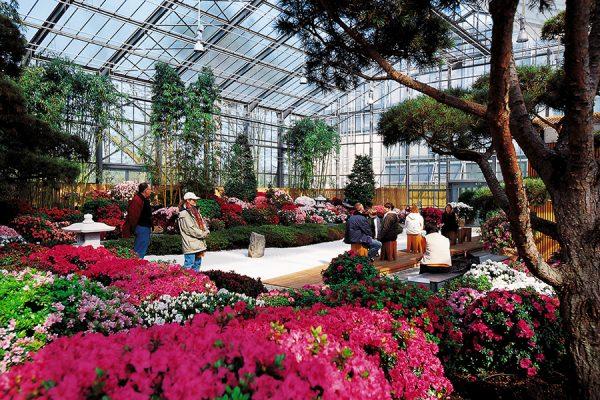 Люди в цветочной оранжерее сада «Ботаника»