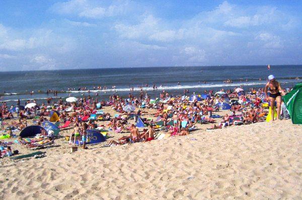 Люди купаются и загорают на пляже