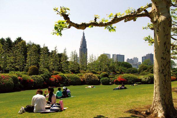 Люди отдыхают на траве в парке Синдзюку