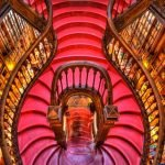 Лестница в лавке Livraria Lello