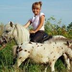 Девочка на пони в зоопарке «Глория»