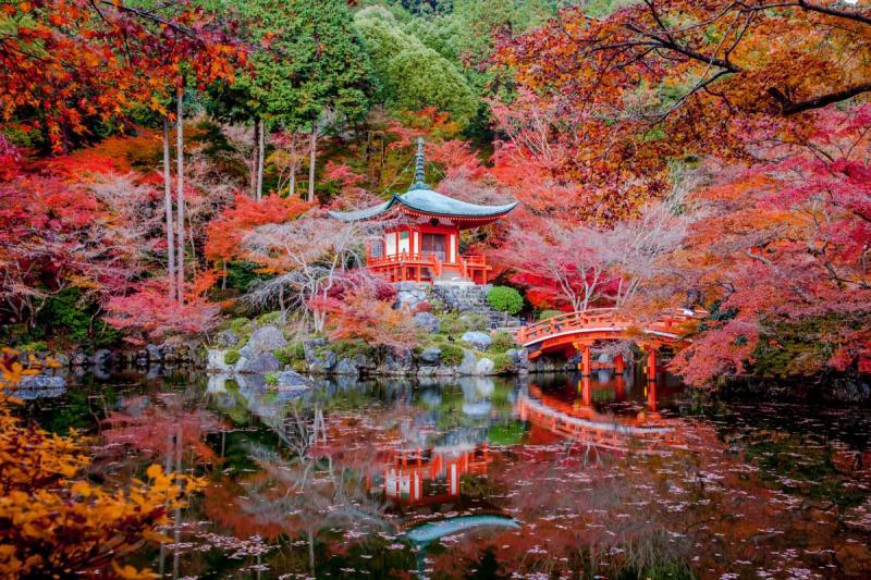 Путешествие в Киото