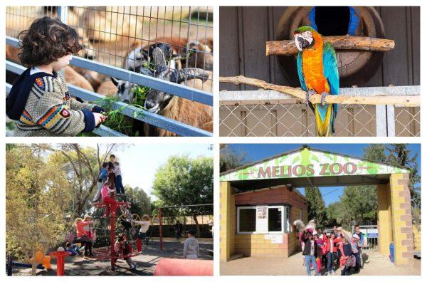 Зоопарк «Мелиос» в Никосии