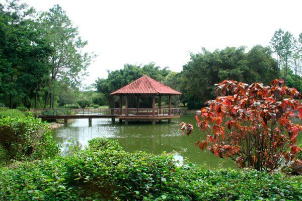 Японский сад в Ботаническом саду Гаваны