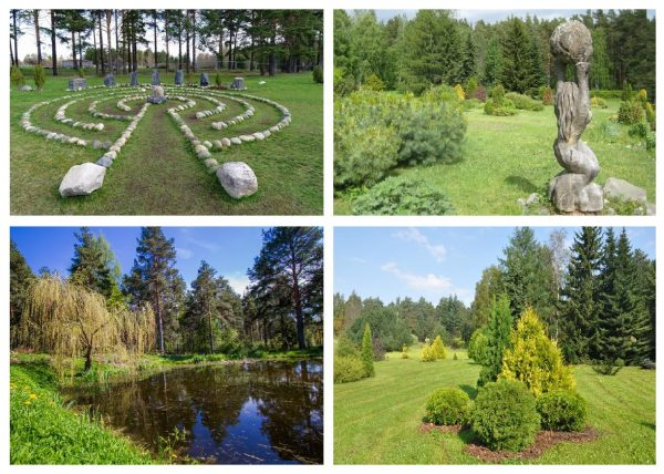 Ботанический сад ПетрГУ