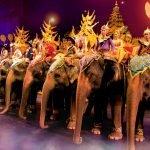 Слоны в парке «Фантазия»