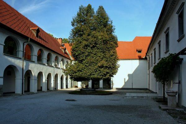 Двор замка Фужине