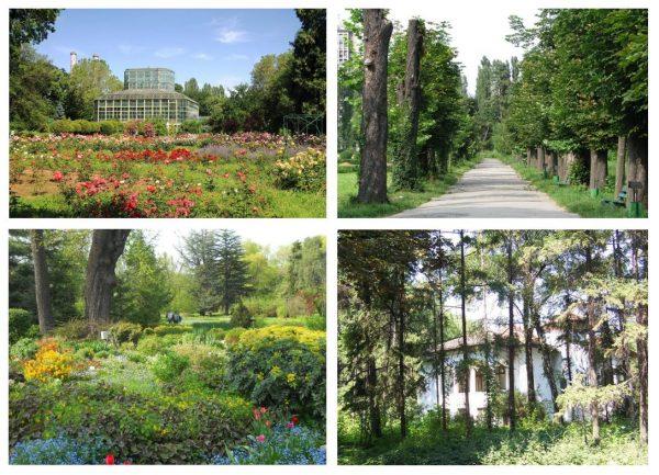 Городской ботанический сад в Бухаресте
