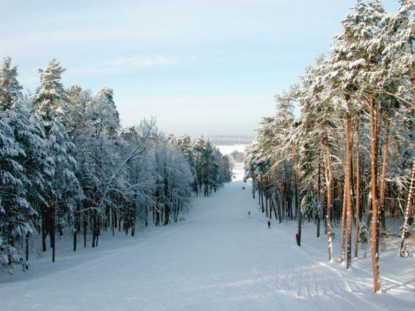 Лыжная трасса в окрестностях Звенигорода