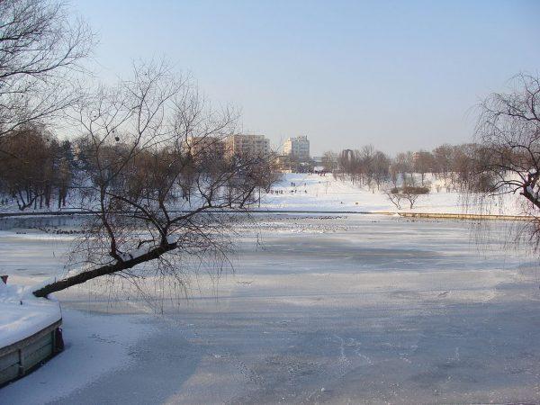 Парк Тинеретулуи в Бухаресте