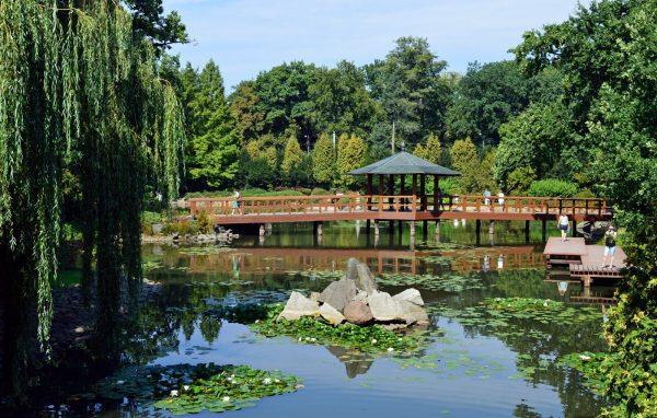Ландшафт японского сада