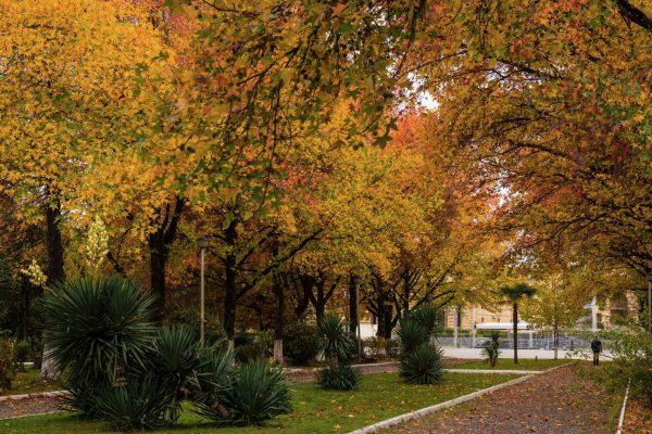 Парк Свободы осенью, Сухум